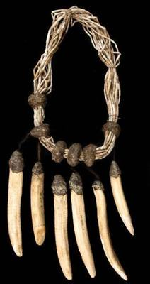 Aboriginal necklace of dugong tusks